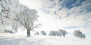 winter-weihnacht